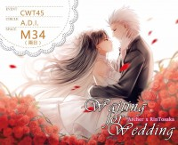 [Fate弓凜]Waiting for Wedding