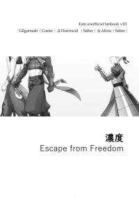 【FGO】濃度(Escape from Freedom)四次金劍槍IN迦勒底日常 印調