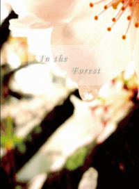 赤安本《In the Forest》