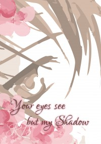 Your Eyes See But My Shadow