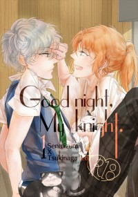 Good night, My knight 1