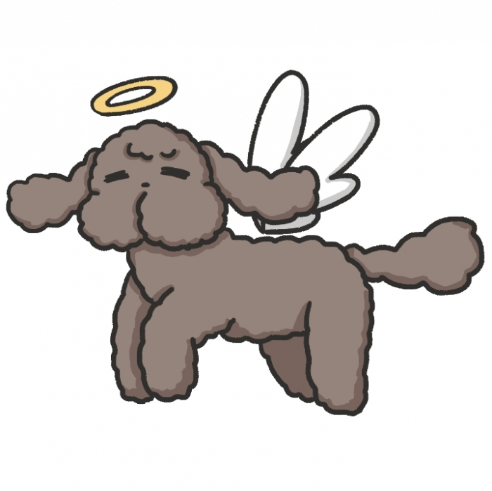 Yuri On Ice Fly Makkachin(2)