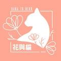 花與貓個人