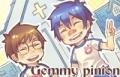 GEMMY-PINION