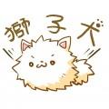 獅子犬毛茸茸
