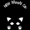 NEW MOON CAT