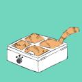 喵箱會議 MeowBox